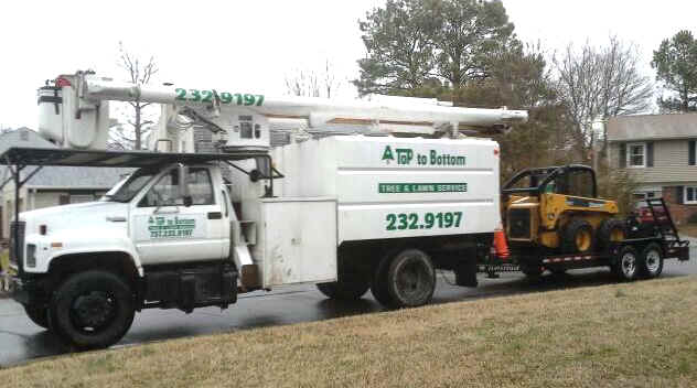 Virginia Beach Tree Service and all of Hampton Roads